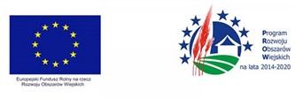 logo PROW + UE PROW.jpeg
