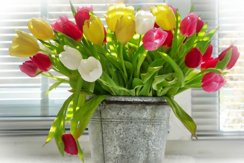 23111519-wazony-na-wiosenne-kwiaty.jpeg