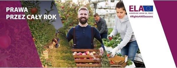 Kampania nt. pracy sezonowej w UE 2021.jpeg